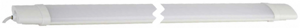 Светильник ЛСП 2х36 - общий вид